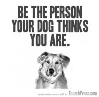 Be the person you're dog thinks you are