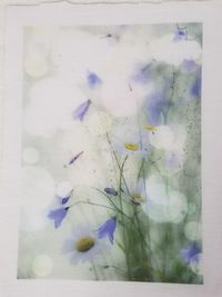 """Fabric Panel, Purple Flowers, 5"""" x 7"""" , Poly Quilt Fabric by the Square, Crafts, Quilts, Quilters, Patchwork, Needle Point, Patchwork $8.95"""
