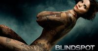 blindspot tv show - A girl who doesn't remember anything, but can the tattoos on her body be a clue?