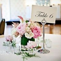 nice elegant table numbers