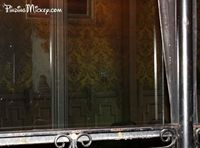 Look at this carefully. You can just make out a spider and his web. In the Haunted Mansion a guest broke the glass that stands in between the doom buggies and the ballroom. Instead of replacing all the glass they painted it to look like a spider web, a re...