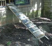 How to Build a Dog Ramp/Bridge on a Budget