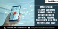 Occupational Therapy Software Market