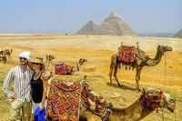 Looking for the book best tour and travel agency? We Offering a better range of Egypt Travel Package with 5-star Hotels and Nile Cruises. To get more information contact us 08081349914