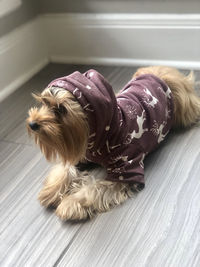 Oh Deer!! Dog Hoodie ** Sweater Knit for Dogs $25.00