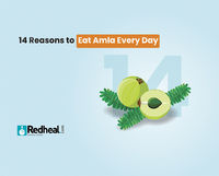 Did you know that a single amla has the vitamin C content that is equivalent to that of 20 oranges? Check our latest blog article to understand its numerous health benefits.