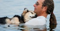 Owner takes his 19 year old dog Schoep into the lake each evening to lull him to sleep to ease his arthritis. Unconditional love. <3 Awwww.