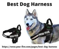 Looking for a reliable pet store online to buy the best dog harness that trusts your dogs? If yes, you have come to the right place. Paw Five is Texas based notorious company that renders the best quality and innovative dog products to better meet your pe...