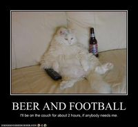 Beer and Football. I'll be on the couch if anybody needs me, this weekend