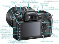 Blog giving weekly classes teaching how to use an SLR camera.