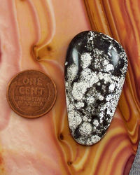 50 Carat Nevada Natural Starry Night Variscite Cabochon Loose Gemstone for Jewelry Making $37.50