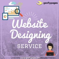 Create an online space for business growth with us. Design a responsive business website for future growth. Geoflypages is a best web design company in USA. Get the quality service for startup business promotion online. We have an expert website designer ...