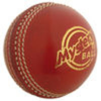 GRAY-NICOLLS Mystery Cricket Ball (541904/5) Gray-Nicholls have a range of products developed to enhance training sessions. The training equipment is a cross over other sports to develop specific aspects of individual fitness or individuals skil h...