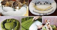 Home made dog/cat bed - Good idea since they sleep on your clean clothes anyways!