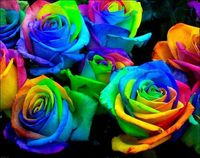 science project: Make rainbow roses by splitting the stems into strands and placing each one in food coloring. The roses draw the food coloring into the petals. Have to do this!!!!