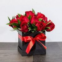 Among all the flowers Roses are the most beautiful and effective way of showing love and care. For more info visit our website:- https://www.onlinedelivery.in/rose/noida