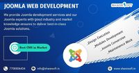 By deciding on a Joomla Development Service for your website, Joomla CMS allows the unique possibility of managing and updating your website through a number of support levels.