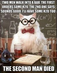 See more 'Chemistry Cat' images on Know Your Meme!