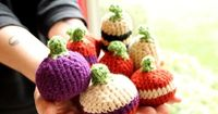 Free Pattern. Scroll down for download button. Pumpkins Cover Photo