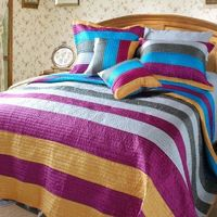 Modern Suburban Striped Metallic Shiny Colorful Coverlet Bedspread Set (DXJ106215) $82.00