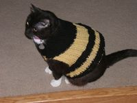 Threadybear's Lucybee's sweater. Sophie might kill me ...