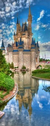 I want to go to disneyworld because it is the most fun place in the world