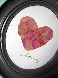 Pressed flower petals from wedding bouquet