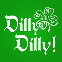 Who do you know who would love this? Irish Dilly Dilly Beer Unisex T-Shirt Handcrafted in the USA! $22.99