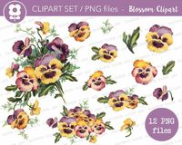 Pansy Flower Clipart Set, Vintage Graphic PNG, Digital Pansies Clipart, Vintage Flower PNG, Instant Download Graphic