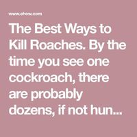 The Best Ways to Kill Roaches. By the time you see one cockroach, there are probably dozens, if not hundreds, somewhere nearby. The sooner you begin a cockroach