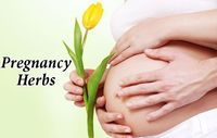 Inducing Labor Naturally: Herbs to Successfully Support Child Birth