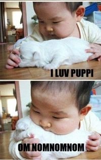 The words are dumb, but there isn't anything cuter than: A) Chubby Asian babies, and B) puppies.