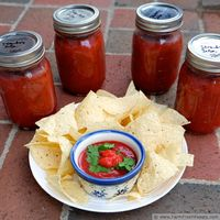 Strawberry Salsa with Hatch Chiles {Cantina Style}