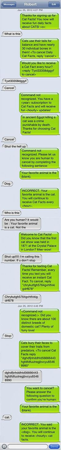 """Guy pranks his friend with annoying """"Cat Facts"""" texts."""