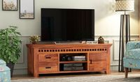 Adolph Tv Unit.jpg