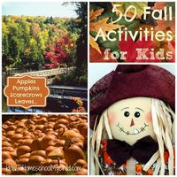 With fall just around the corner, I'm ready to celebrate. I love fall and all the fun, family activities you can do with your kids. Fall is one of those times I