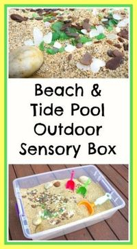 The kids and I brainstormed and came up with an outdoor sensory box using sand~ a beach themed sensory box!