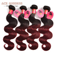 Ombre Brazilian Hair $203.49