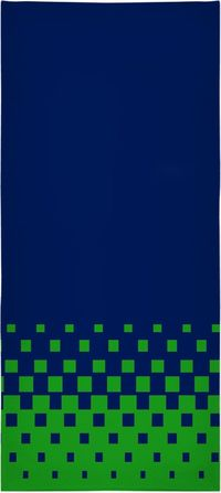 ROBT Seahawks Colors Beach Towel $45.00