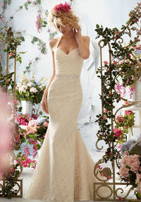 Structured Bodice Wedding Gown With Criss Cross