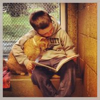 It's an adorable win-win situation: Kids can practice reading while shelter cats get the affection they need. Organized by the Animal Rescue League -- an animal