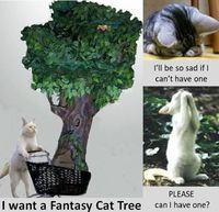 Fantasy Cat Trees are the Best Cat Trees Ever Ultimate Cat Tree