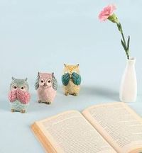 Wise Owls Home Décor Set