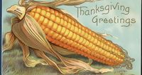 Thanksgiving ~ Large Corn Ear Brightly Colored