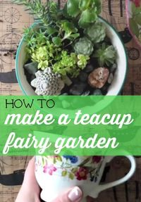 Fairy gardens are small gardens, often created in containers such as terra cotta pots, that contain small plants and whimsical decorative details, like tiny ani