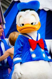 Best Donald pic ever!