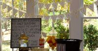 """""""You Are My Sunshine"""" --adorable baby shower theme for boy or girl!"""