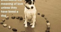 http://www.bkgstory.com No one can fully understand the meaning of love unless�€�