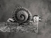anne geddes, snails and funny baby pictures.