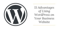 15 Advantages of Using WordPress on Your Business Website